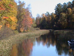 A picture of a river near the cabin where we sometimes canoe.