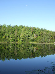 Picture of a northwoods lake with trees and sky reflecting in the water.