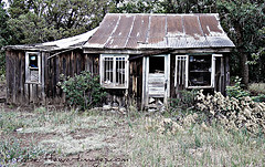 Image of an old broken down shack.