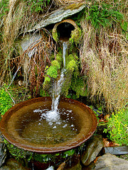 Image of fresh water spring.