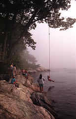 Picture of people swinging on a rope swing over water.